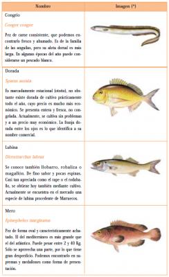 consumo pescados semigraso