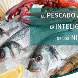 pescado inteligencia niños